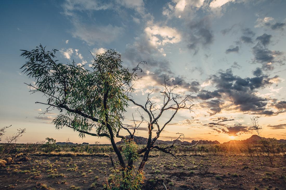 australiennordwestenblogfrumolt2018-39